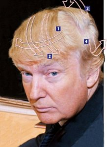 I did this image as an illustration for The Engineers Article, as a visual aid to help us understand The Donald.